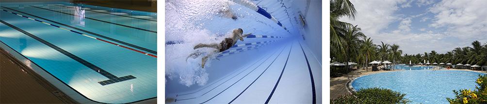 swimming01.jpg