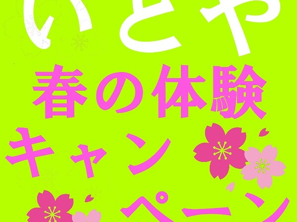 spring_cam2020.jpg