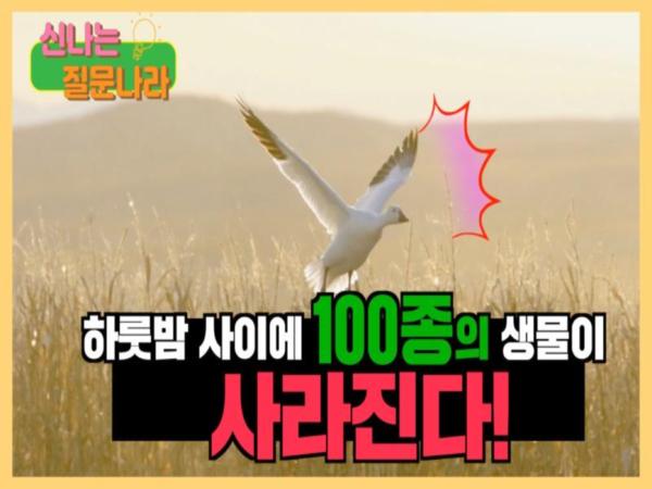 2 전환마을 02 - 생물다양성문제편 썸네일.png